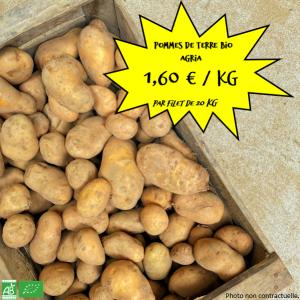 """Pommes de terre bio """"Agria"""" par 20 kg"""