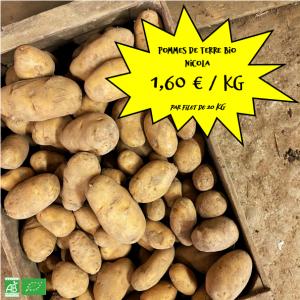 """Pommes de terre bio """"Nicola"""" par 20 kg"""